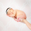 Newborn : 63 galleries with 8210 photos